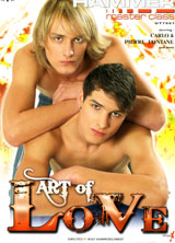 Art of Love porn dvd cover
