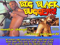 Big Black Buggers