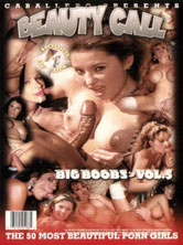 Big Boobs Volume 5 DVD Cover