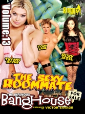 The Sexy Roommate Part 3 DVD Cover
